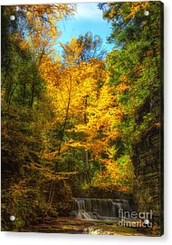 Upper Pinnacle Falls Acrylic Print