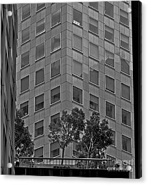 Urban Living In San Francisco - A Garden In The City Acrylic Print by Mark Hendrickson