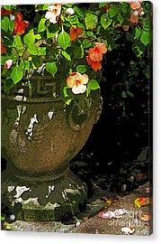 Urn Of Impatience Acrylic Print by Deborah Johnson