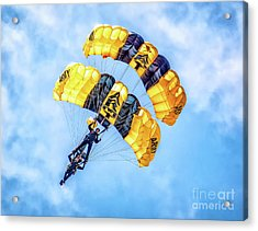 Acrylic Print featuring the photograph U.s. Army Golden Knights by Nick Zelinsky