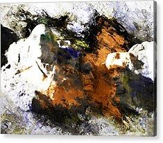 Us Capital Washington 003 Acrylic Print by Gull G