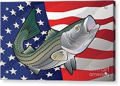 Usa Rockfish Striped Bass Acrylic Print by Joe Barsin