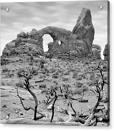 Utah Outback 37 Acrylic Print by Mike McGlothlen
