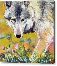 Acrylic Print featuring the pastel Vagabond by Pattie Wall