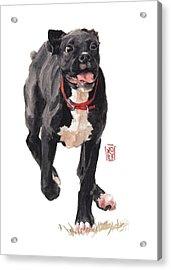 Valentine Acrylic Print by Debra Jones