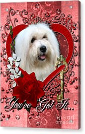 Valentines - Key To My Heart Coton De Tulear Acrylic Print by Renae Laughner