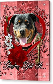 Valentines - Key To My Heart Rottweiler Acrylic Print by Renae Laughner