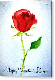 Valentine's Day Rose Acrylic Print by Claire Bull