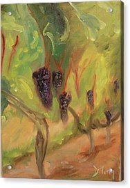 Acrylic Print featuring the painting Valhalla Vineyard by Donna Tuten