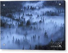 Acrylic Print featuring the photograph Valley In Fog by Stan and Anne Foster