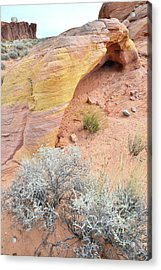 Acrylic Print featuring the photograph Valley Of Fire Arch Of Color by Ray Mathis