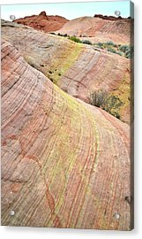 Acrylic Print featuring the photograph Valley Of Fire Pastel Dunes by Ray Mathis