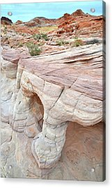 Acrylic Print featuring the photograph Valley Of Fire's Wash 3 by Ray Mathis