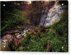 Valley Of Golden Light Acrylic Print