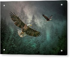 Valley Of The Eagles. Acrylic Print