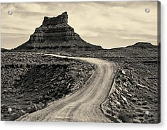 Acrylic Print featuring the photograph Valley Of The Gods IIi Toned by David Gordon