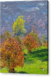 Valley Of The Trees Acrylic Print