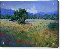 Valley View Acrylic Print by Paula Ann Ford