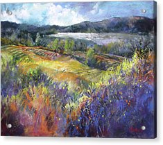Valley View Acrylic Print by Rae Andrews