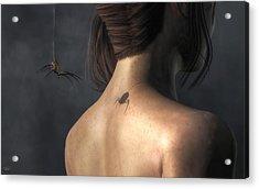 Vampire Spider Acrylic Print by Daniel Eskridge