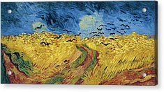 Van Gogh Wheatfield With Crows Acrylic Print by Vincent Van Gogh