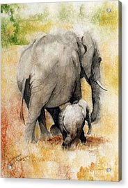 Vanishing Thunder Series - Mama And Baby Elephant Acrylic Print by Suzanne Schaefer