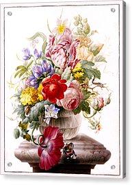 Vanitas Still Life Acrylic Print