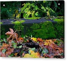 Varigated Fall Acrylic Print