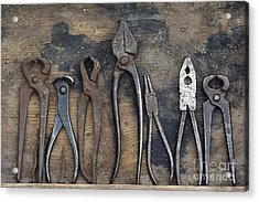 Various Forceps Acrylic Print by Michal Boubin