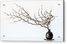 Vase And Branch Acrylic Print