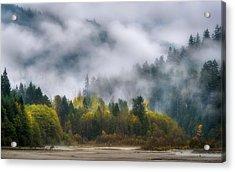 Veiled Autumn Acrylic Print