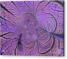 Veins Acrylic Print by Anne Ditmars