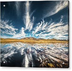 Veins Of Earth And Sky // Yellowstone National Park  Acrylic Print