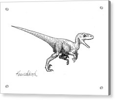 Acrylic Print featuring the drawing Velociraptor - Dinosaur Black And White Ink Drawing by Karen Whitworth