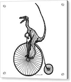 Velociraptor Acrylic Print by Karl Addison