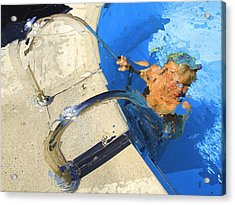 Acrylic Print featuring the photograph Vence Pool by Richard Wiggins