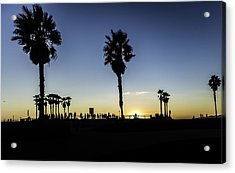 Acrylic Print featuring the photograph Venice Beach Skatepark by Chris Cousins