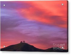 Ventura Ca Two Trees At Sunset Acrylic Print by John A Rodriguez