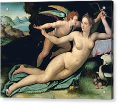 Venus And Cupid Acrylic Print by Alessandro Allori