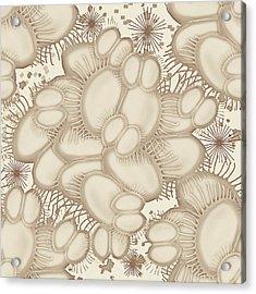 Venus Fly Trap Acrylic Print
