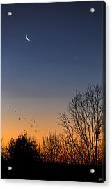 Venus, Mercury And The Moon Acrylic Print
