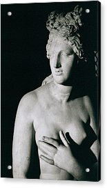 Venus Pudica  Acrylic Print by Unknown