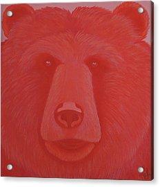 Vermillion Bear Acrylic Print