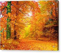 Vermont Autumn Acrylic Print by Vicky Brago-Mitchell
