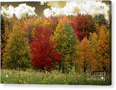 Vermont Drive Acrylic Print by Mindy Sommers