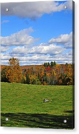 Vermont Field Acrylic Print by Mandy Wiltse
