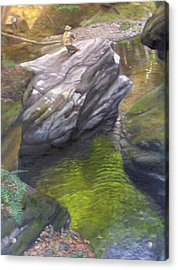 Vermont Fisherman Acrylic Print by Laurel Ellis
