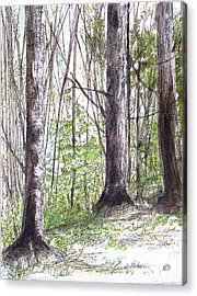 Vermont Woods Acrylic Print by Laurie Rohner