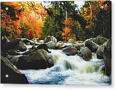 Vermonts Fall Color Rapids Acrylic Print