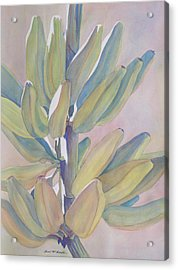 Vertical Banana Bunch Acrylic Print by Carol McDonald